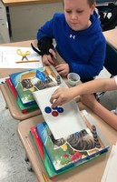 3rd Grade Balanced Forces